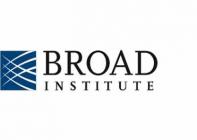 Broad logo square